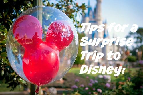 WDW Surprise Trip Idea